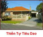 Tieu Dao